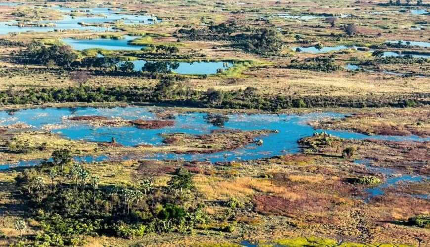 botswana okawango delta safari