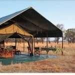 wildcamping safari tanzania