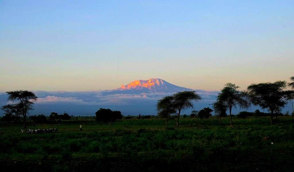 kilimanjaro evid