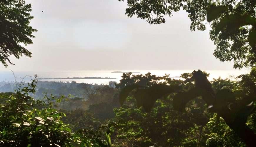 Escursion to Prison island, snorkelling