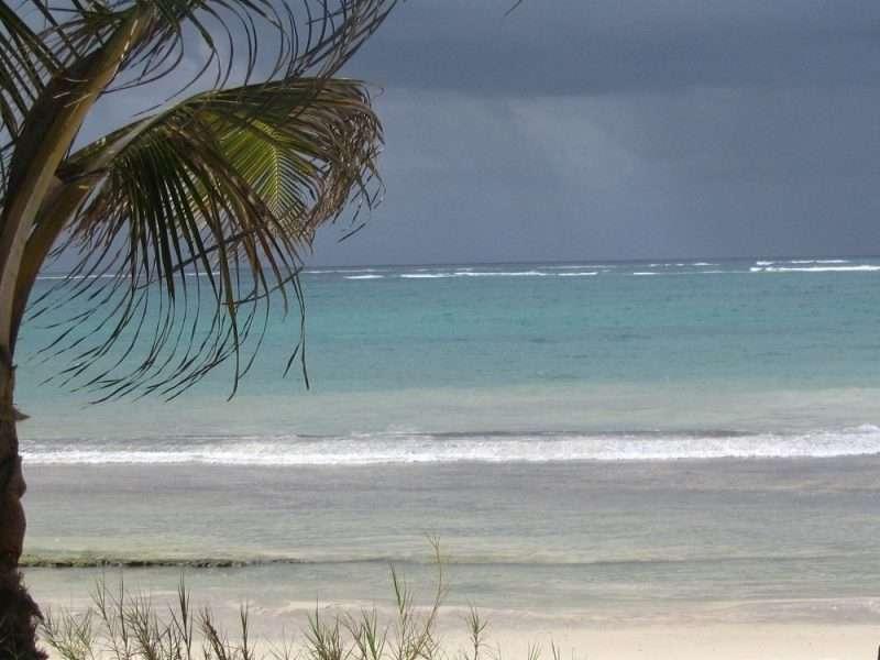 DIANI BEACH 1