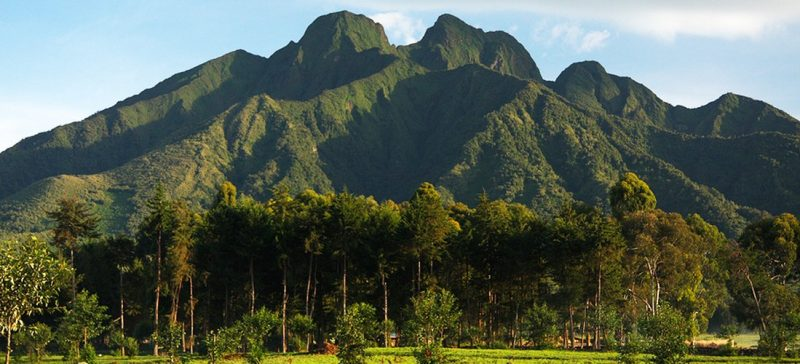 volcanoes national park evid