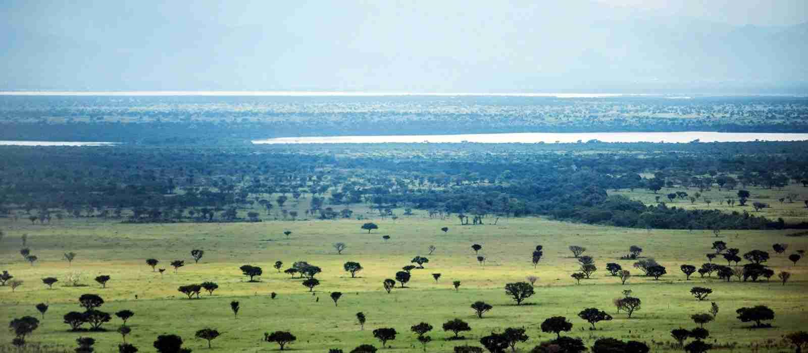 The Kasenyi Plains and Kalinzu Channel