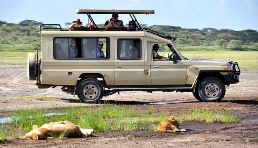 Safari Land Cruiser