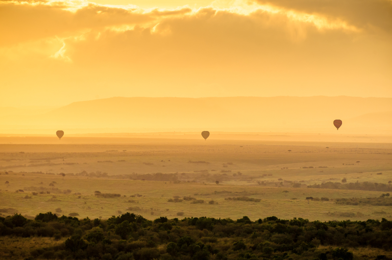 Three hot air balloons take flight , silhouetted in the dawn sky of the Masai Mara National Reserve, Kenya
