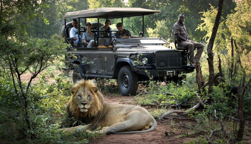 Luxury African Safari moments