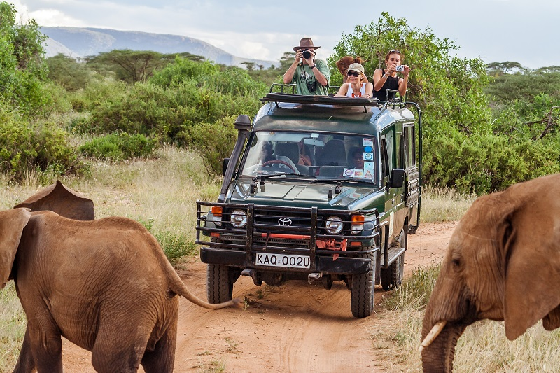 safari clothes EVID