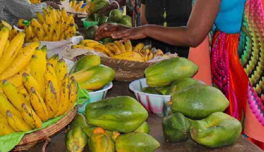 RWANDA FOOD EVID
