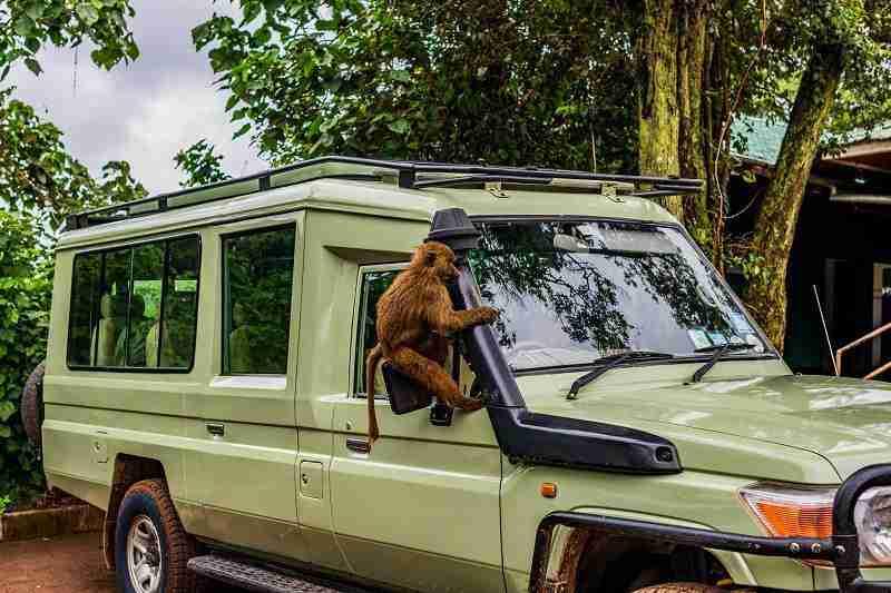 CAR TANZANIA 02