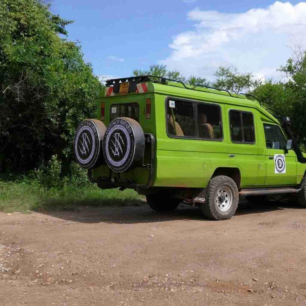 botswana safari 2